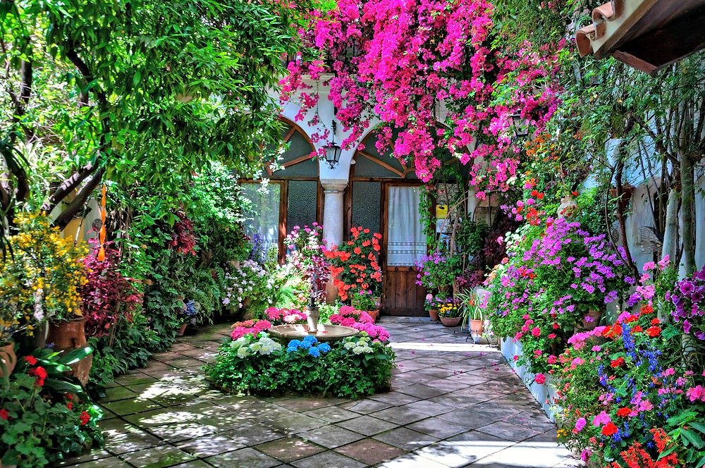 Patio cordobés con buganbillas rosas y arcos